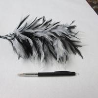 veer MM710 wit/zwart